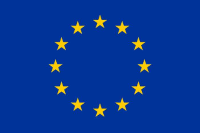 Member of the European Parliament: Person who has been elected to serve as a popular representative in the European Parliament
