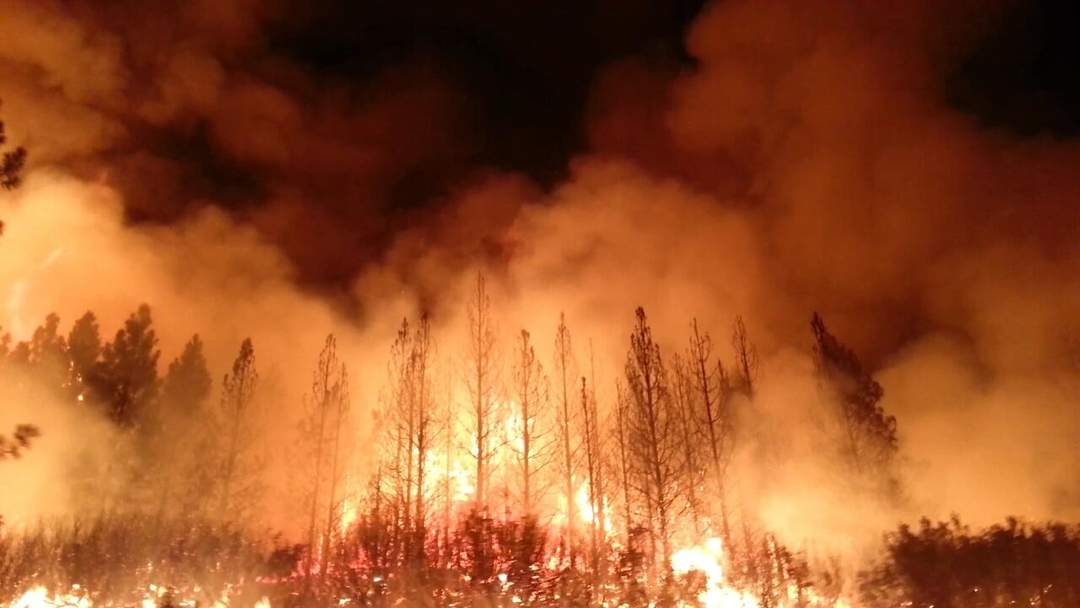 Wildfire: Uncontrolled rapid oxidation of flammable vegetation in rural countryside or wilderness areas